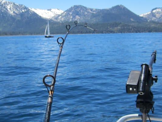 Tahoe sport fishing boating lake tahoe ca reviews for Lake tahoe fishing charters