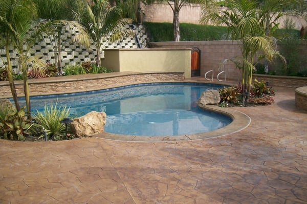 New In Ground Swimming Pool With Raised Bond Beam And Sheer Descents Tropical Themed Landscape