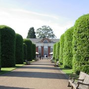 Topiary-lined avenue leading up to the Orangery