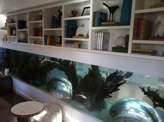 Indoor Aquarium Yelp