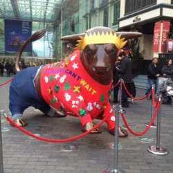 The bull isn't very happy about its jumper...