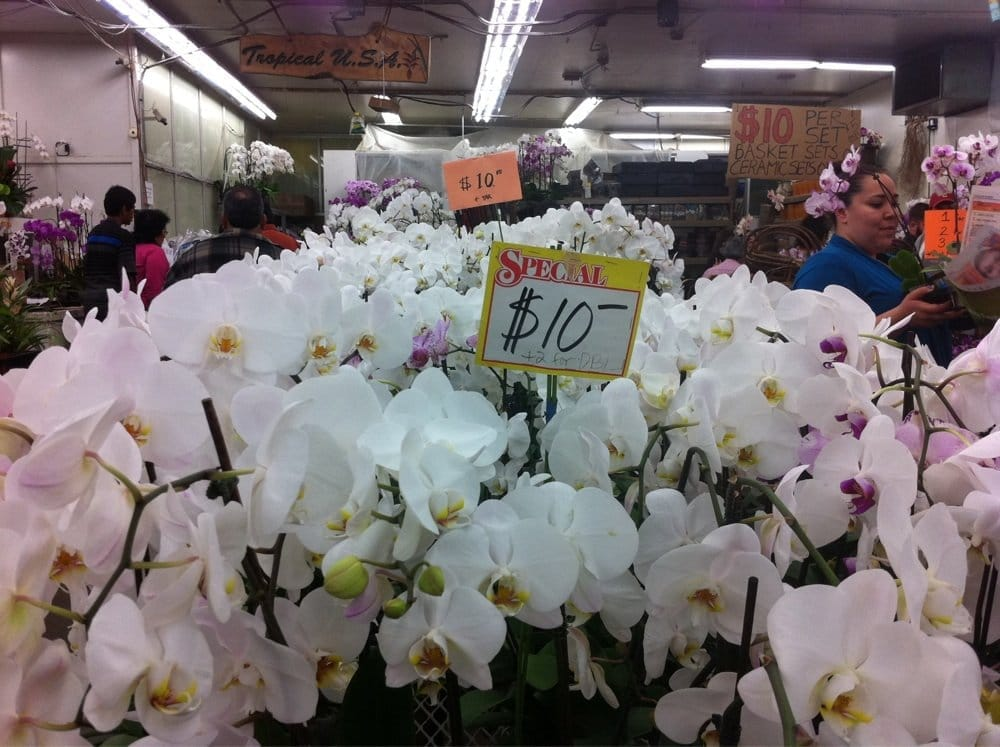 los angeles flower district A few weeks ago, the grim cheaper and i headed out to the original los angeles flower market in downtown la to find a florist for our upcoming wedding on august 21st for those who don't live in the area, the flower market and surrounding flower district are something of a phenomenon, the likes of.