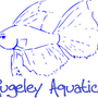 Rugeley Aquatics