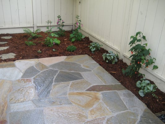 Mortared Flagstone Patio Made Of Amber Quartzite With Landscaping Yelp