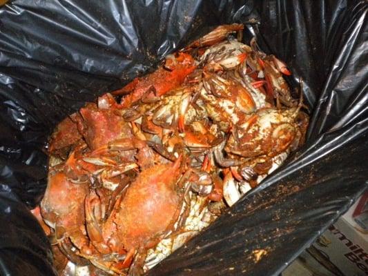 Crab palace vis yelp for Fish market newark nj