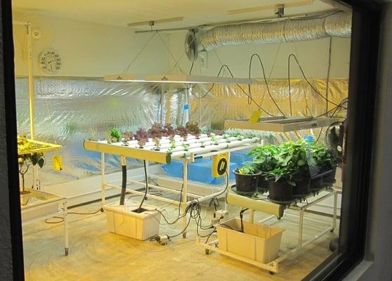 Custom Indooor 20 39 X 20 39 Hydroponics Grow Room Yelp