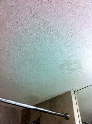 Cleaning Mold from Bathroom Ceilings - LoveToKnow: Answers for