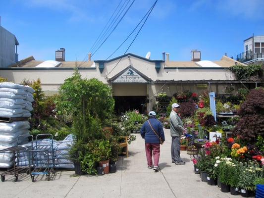 sloat garden center inner richmond san francisco ca united states yelp