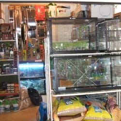 the pet shop amp reptile ranch   faringdon oxfordshire