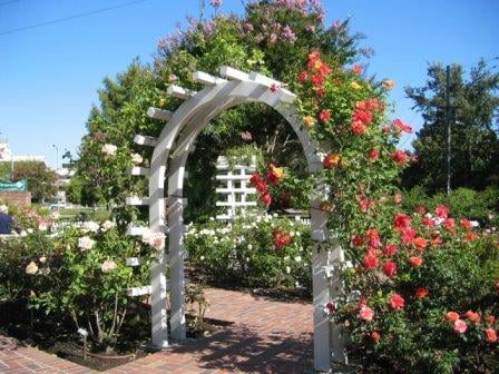 Luther burbank home gardens 42 photos parks santa rosa ca reviews yelp for Luther burbank home and gardens
