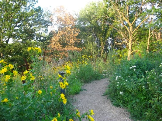 Eloise Butler Wildflower Garden And Bird Sanctuary Hiking Minneapolis Mn Yelp