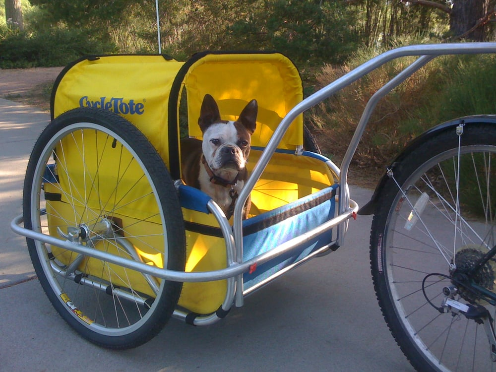 small dog bike trailer yelp. Black Bedroom Furniture Sets. Home Design Ideas