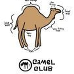 The Camel Club, Liverpool, Merseyside