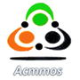 Acmmos Consultancy Services