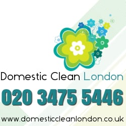 Domestic Clean, London