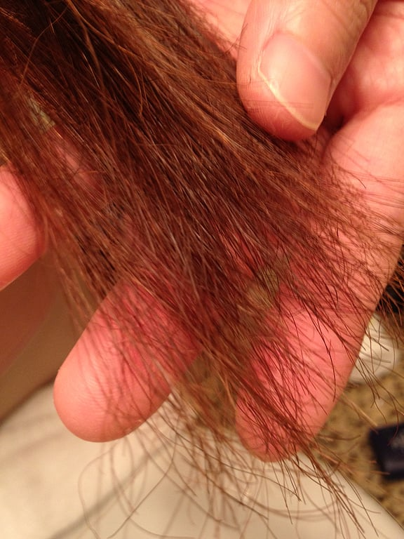 4 Inches Of Burnt Hair After Japanese Magic Straight Perm