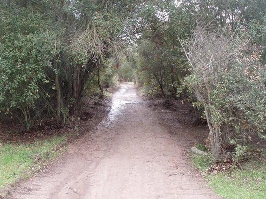 Tecolote Canyon