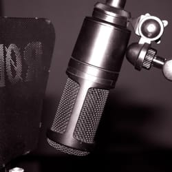 One of the vocal microphones