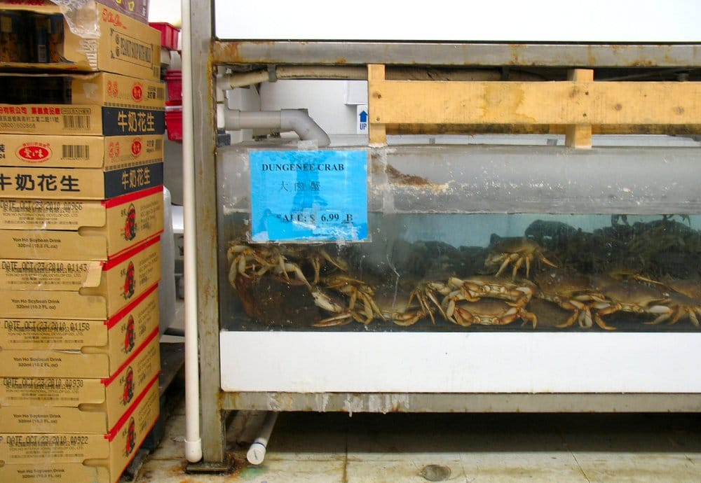 Dungeness crab tank yelp for Walmart with live fish near me