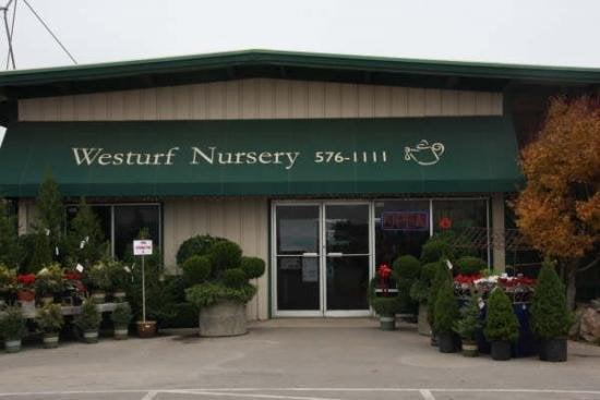 Garden Nurseries Near Me