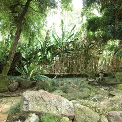 Foster botanical garden honolulu hi for Foster botanical garden honolulu