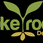 Take Root Design