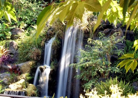Los Angeles County Arboretum And Botanic Garden Arcadia Ca Estados Unidos Yelp