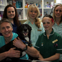 John Hankinson Veterinary Clinic Ltd