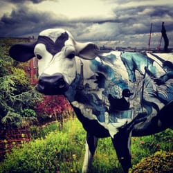 We have a cow, all be it fibre glass! She's called Virginia and she's soooo pretty!