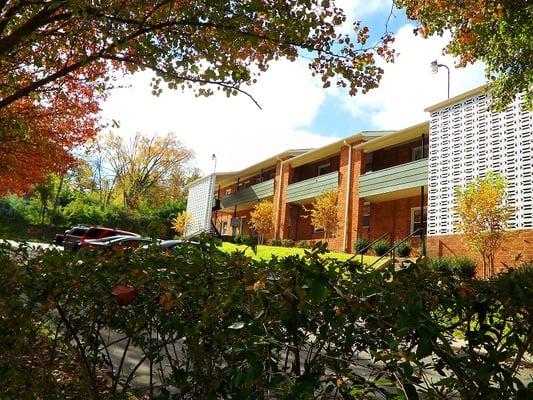 Apartments In Chapel Hill Tn