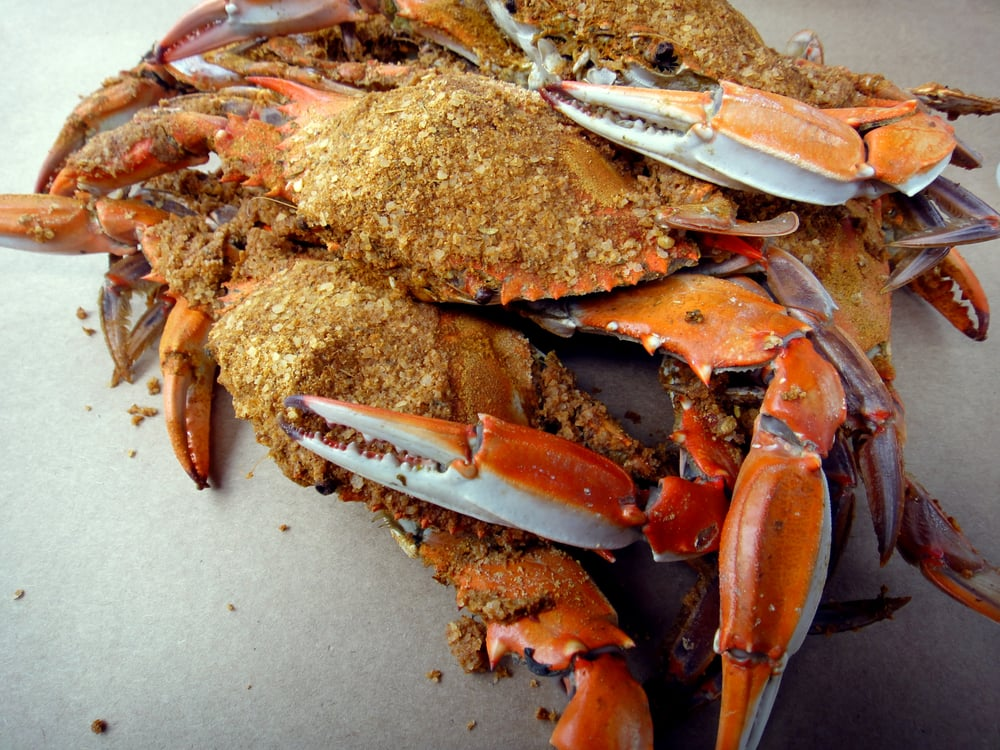 Steamed crabs | Yelp