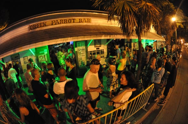 Green Parrot Bar Dive Bars Reviews Yelp