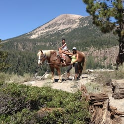 There are 806 casual sex seekers in Mammoth Lakes within a 20 Mi radius