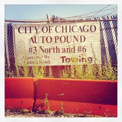 city of chicago auto pound automotive chicago il. Black Bedroom Furniture Sets. Home Design Ideas