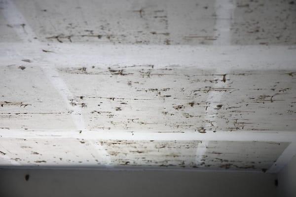 Ceiling Sheet Rock Damage Yelp